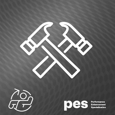 live-workshop---pes