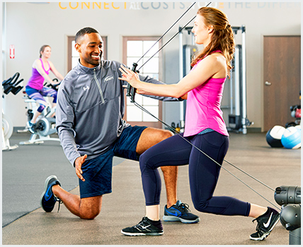 how to become a personal trainer | national academy of sports medicine, Human body
