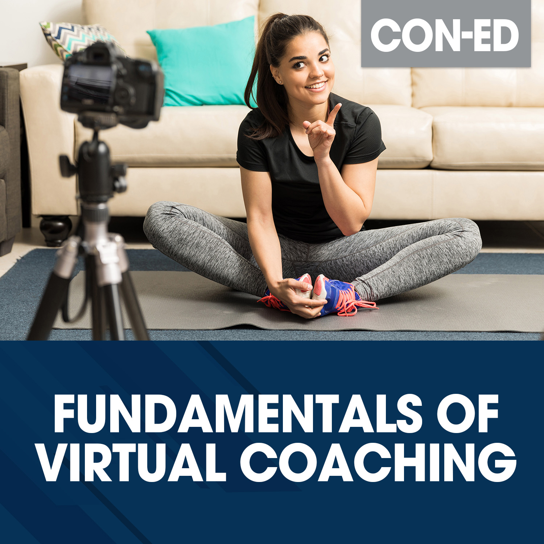 Fundamentals of Virtual Coaching